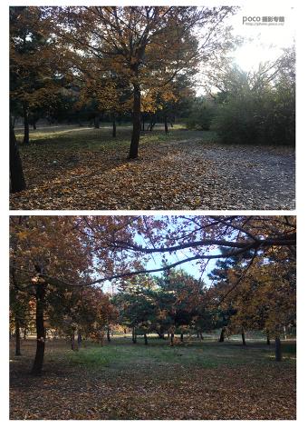 如何调制秋季暖黄色外景照片的PS技巧