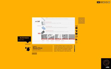30个华美的Flash网站设计欣赏