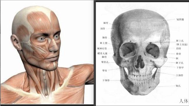 PS学习古铜肤色人物头像皮肤磨皮教程