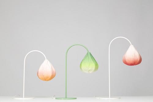 Bloom Lamps 灯具<a href=http://www.06ps.com/design/ target=_blank class=infotextkey>设计</a>
