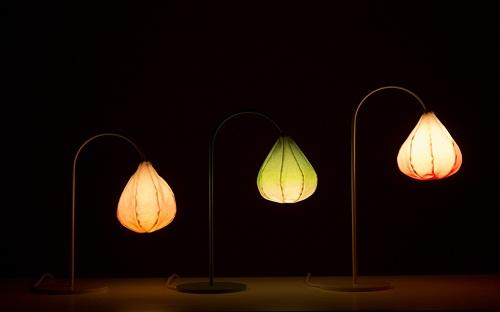 Bloom Lamps 灯具设计
